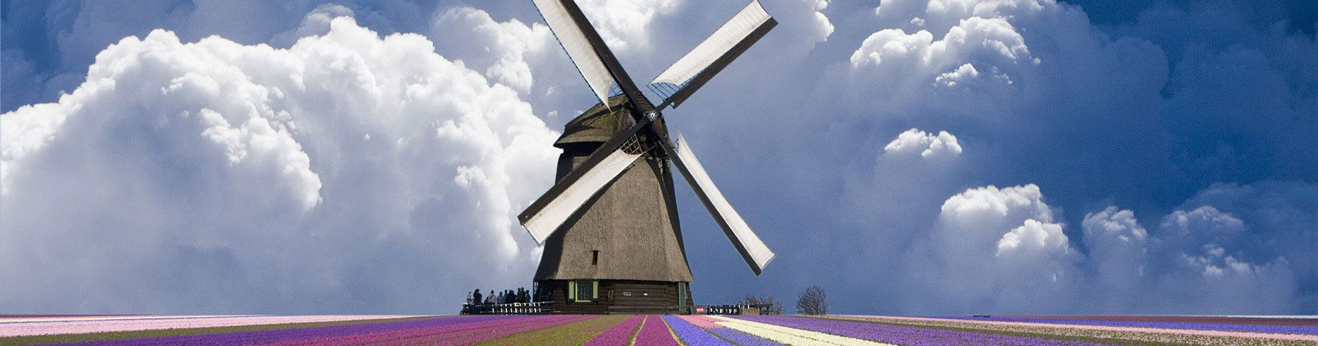 Windmill and Fields